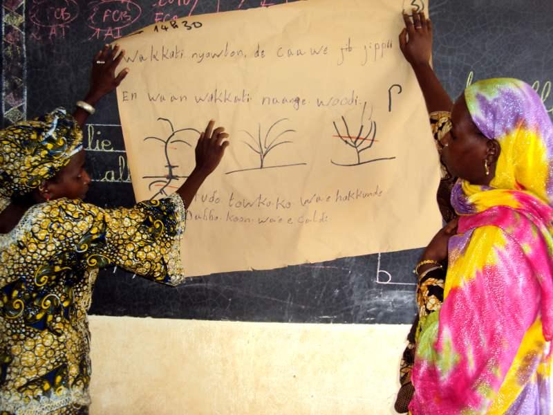 Femme peule s'initiant à la fauche du fourrage (cours théorique)
