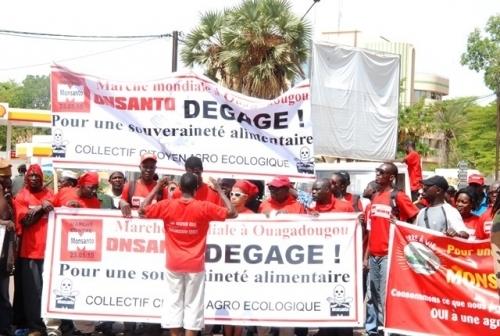 Manifestation contre Monsanto à Ouagadougou en mars 2015